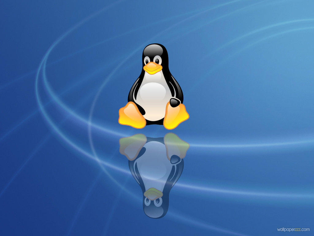 47+] Linux Penguin Wallpaper on WallpaperSafari