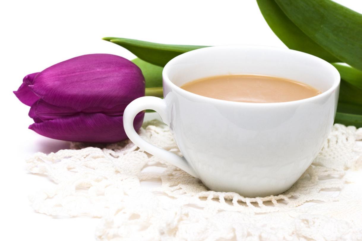 cup of tea - HD1219×812