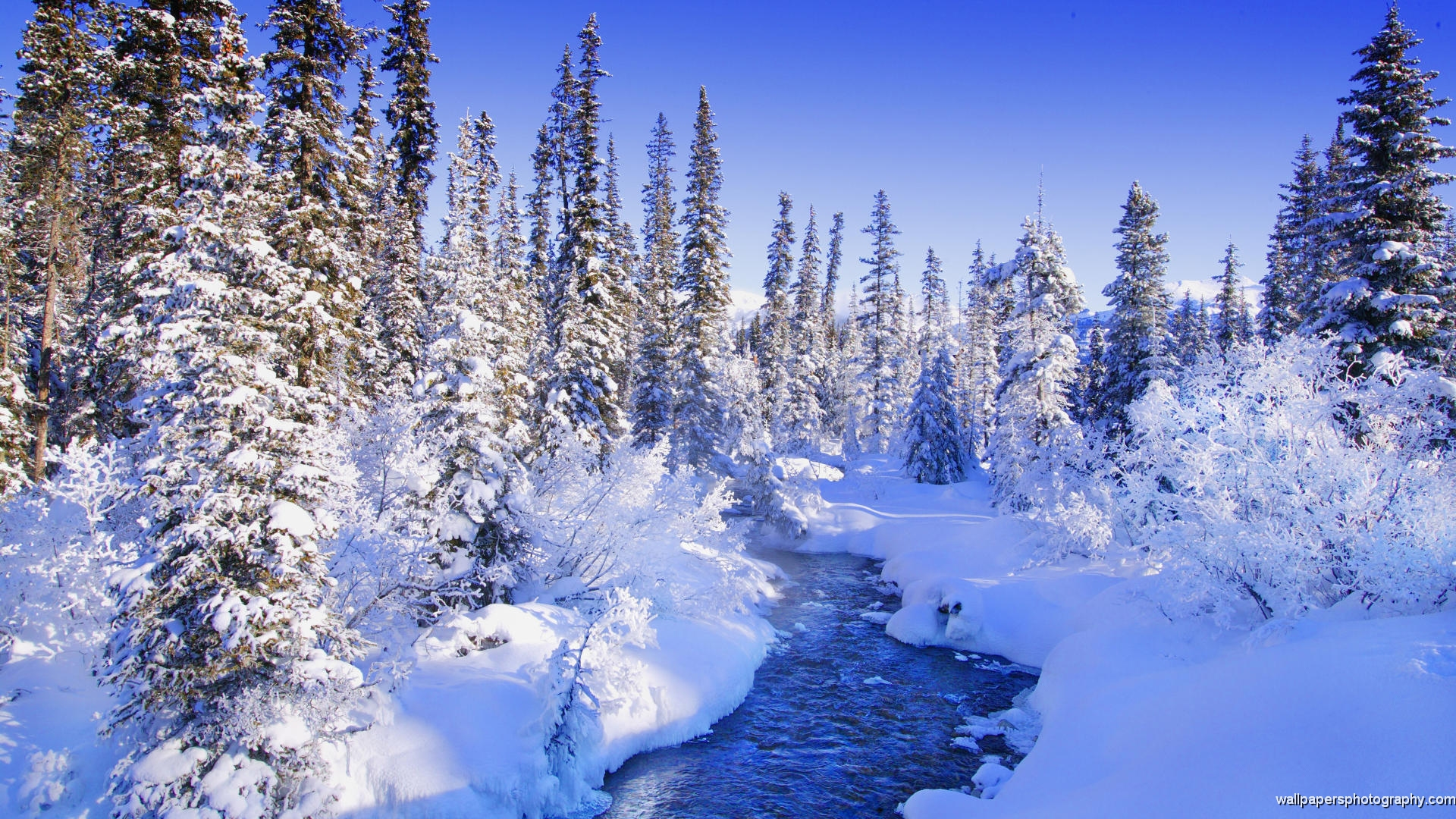 snow scenery full hd - photo #18