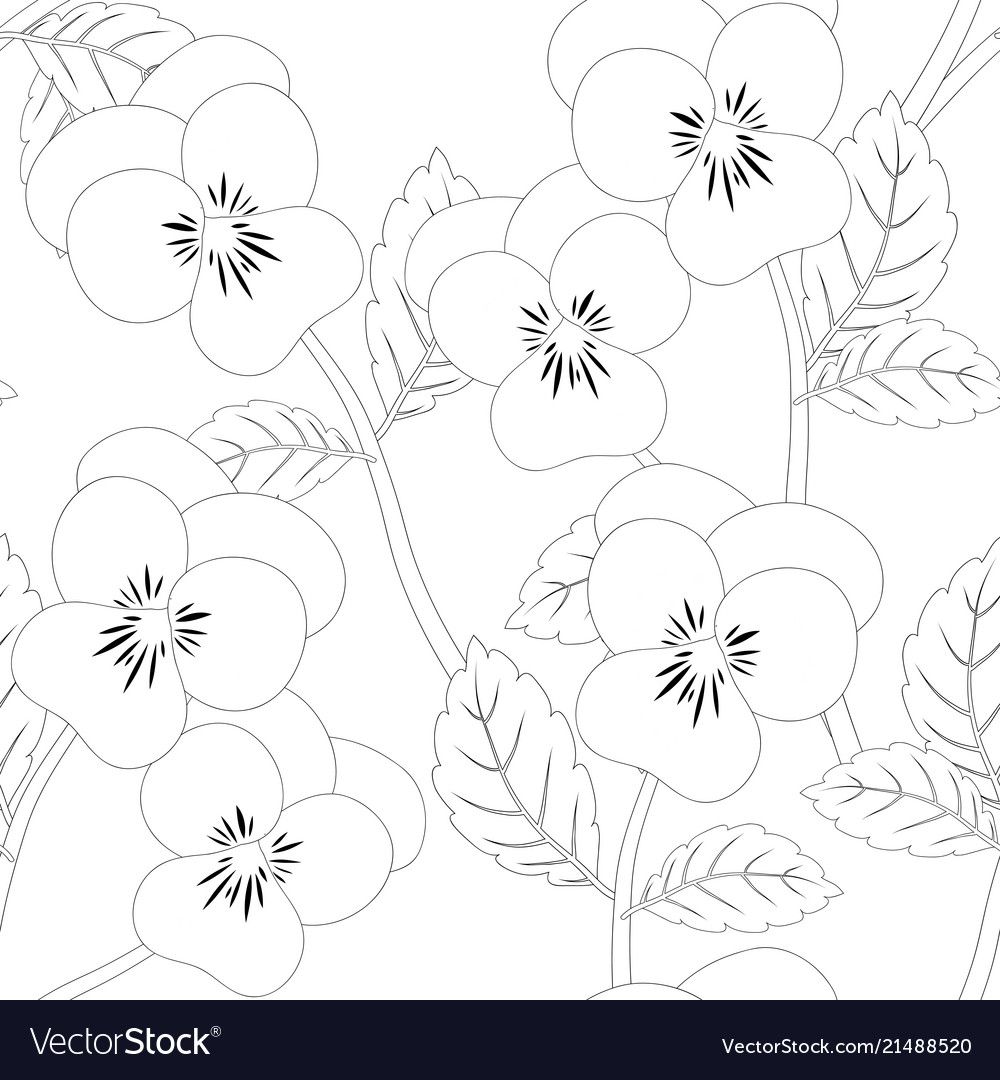 Pansy flower on seamless background outline Vector Image 1000x1080