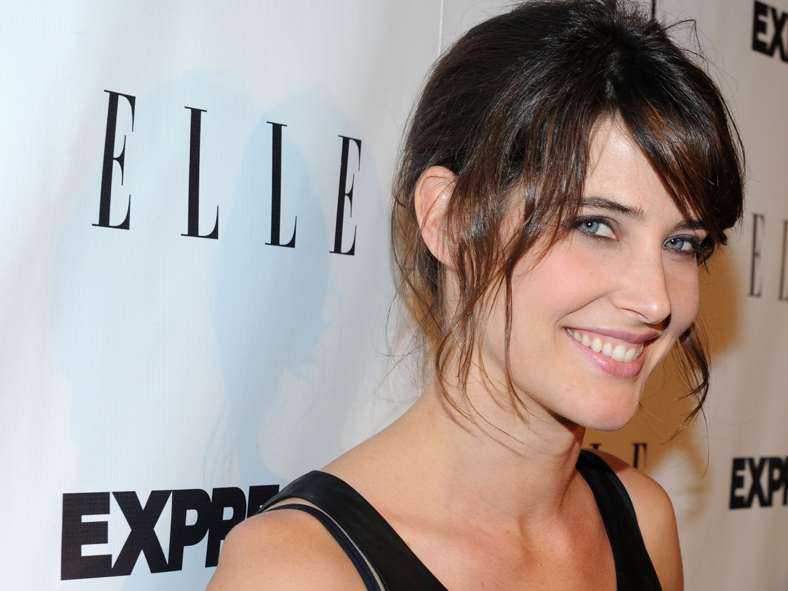 hd Cobie Smulders hot hd wallpapers Cobie Smulders hd wallpapers 1600x1200