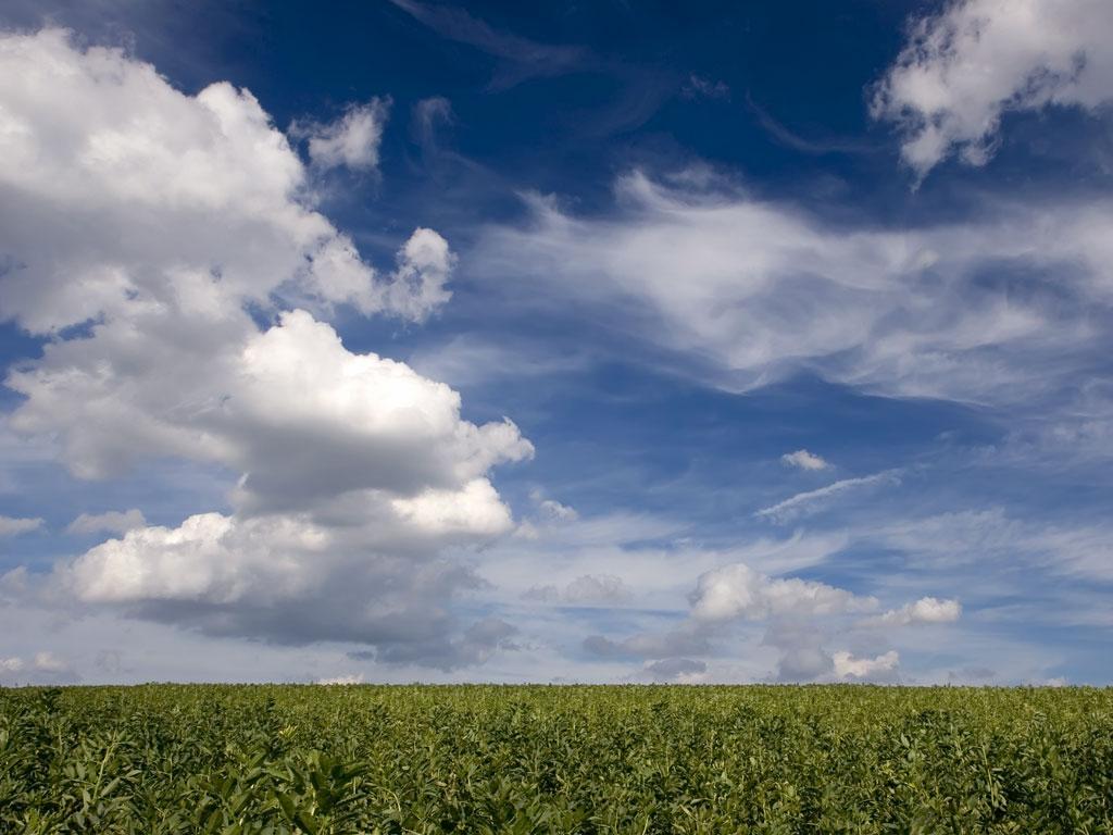 free cloud in blue sky wallpaper cloud in blue sky background 1024x768