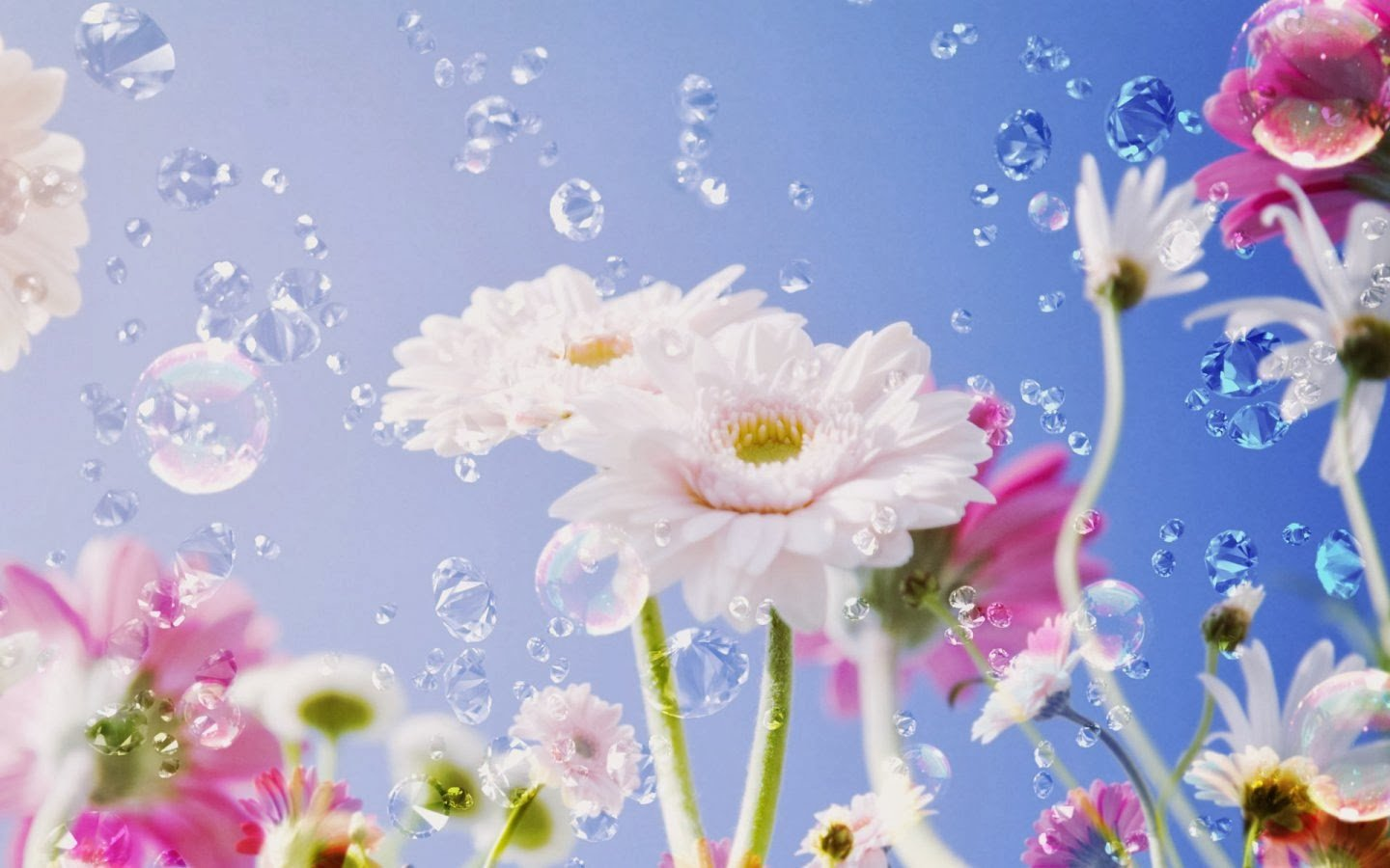 Bright flower wallpaper   beautiful desktop wallpapers 2014 1440x900