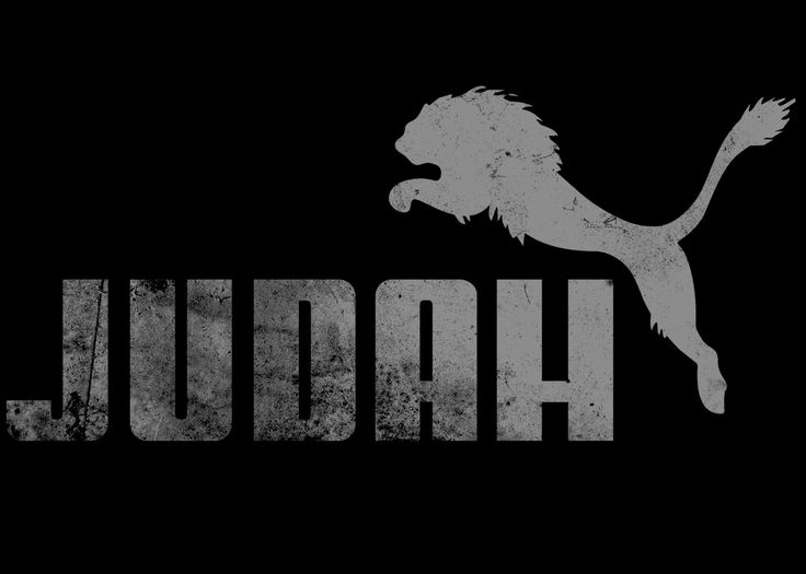 Download the Lion of Judah Christian Desktop Wallpaper at NOTW 736x525
