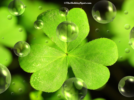 St Patricks Day Computer Desktop Wallpapers Pictures Images 560x420