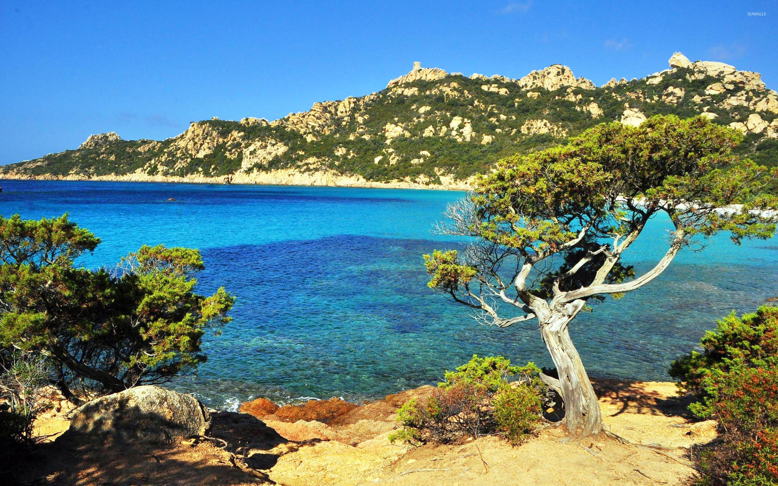 Corsica wallpaper   Beach wallpapers   13676 2560x1600