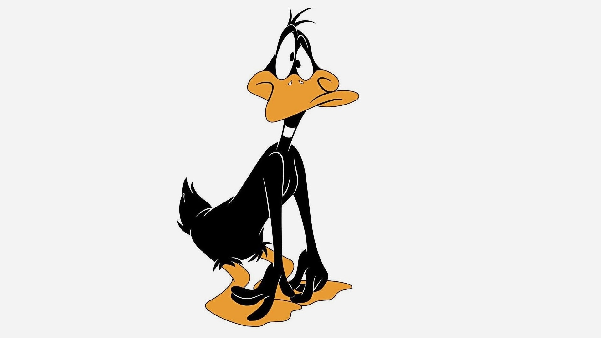 Daffy Duck Wallpapers ...