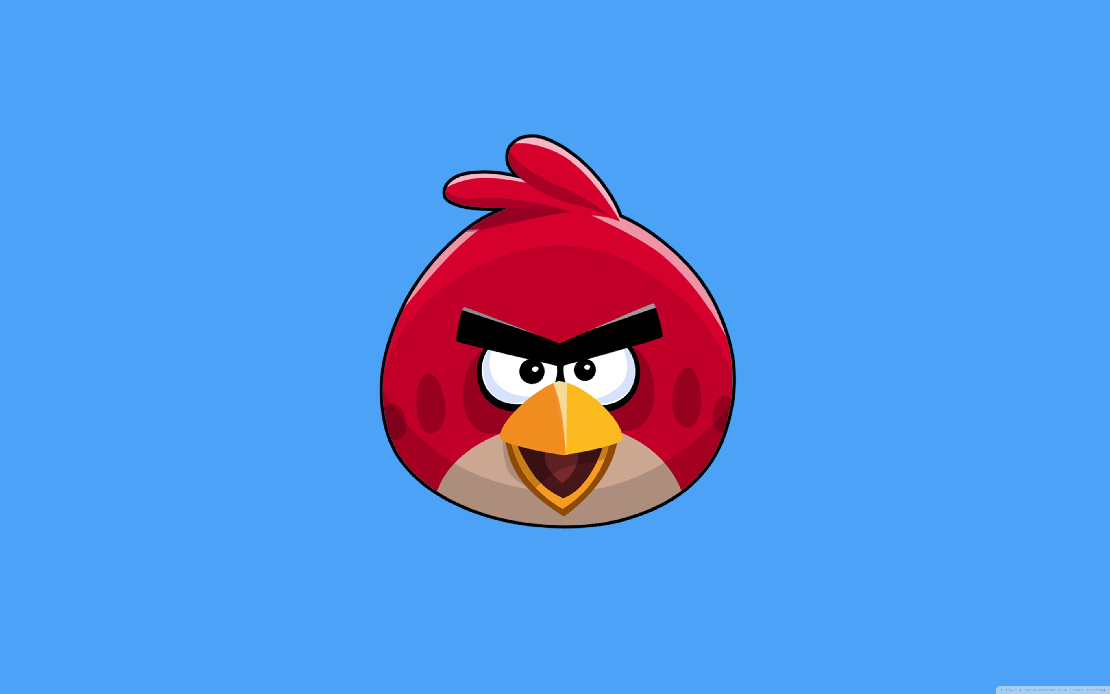 Free Angry Birds Hd Wallpaper [3840x2400] For Your