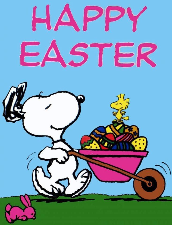 Peanuts Easter  Snoopy Peanuts Easter Snoopy Charlie 735x960