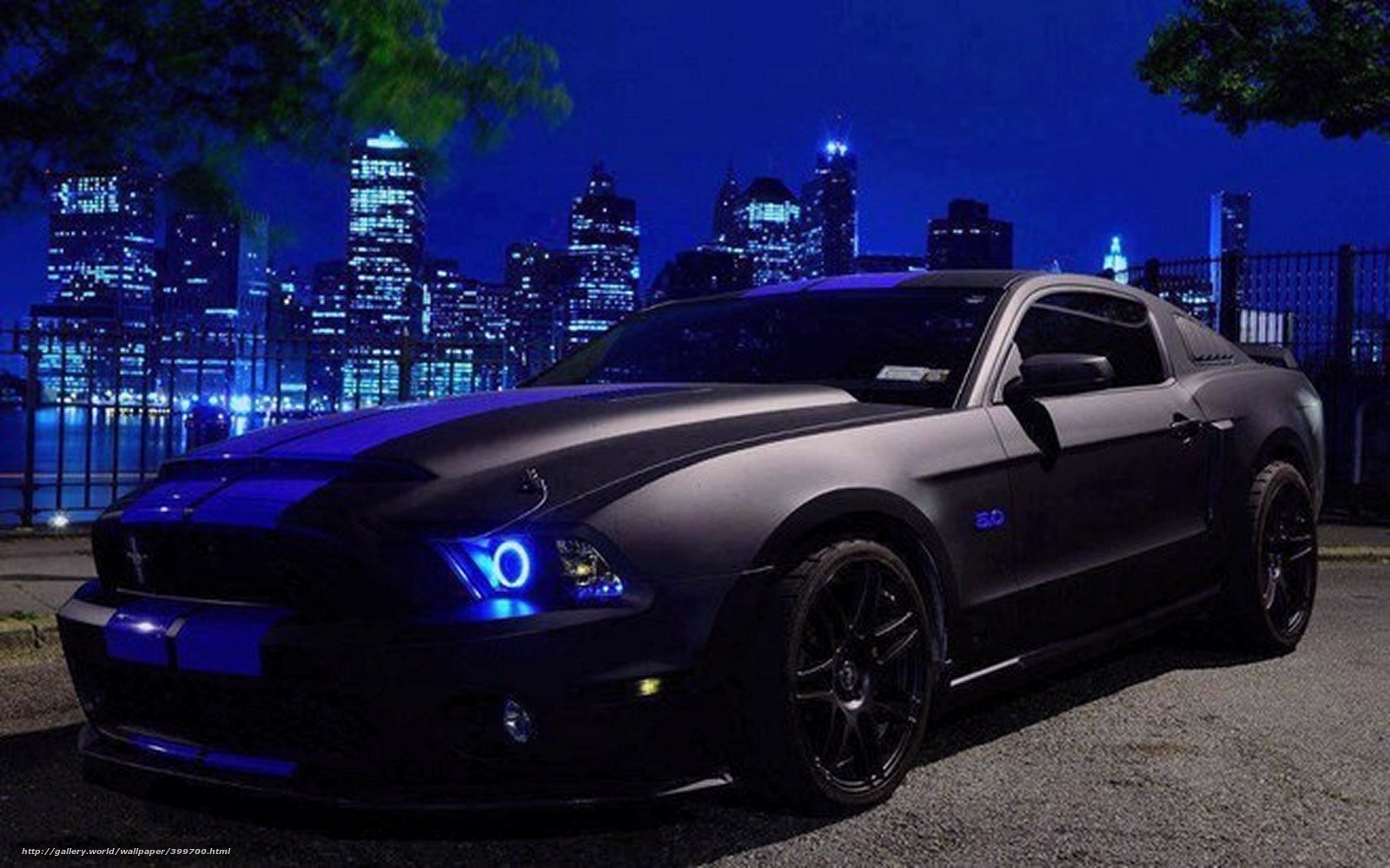 Download wallpaper Mustang black Tuning cars desktop wallpaper 1600x1000