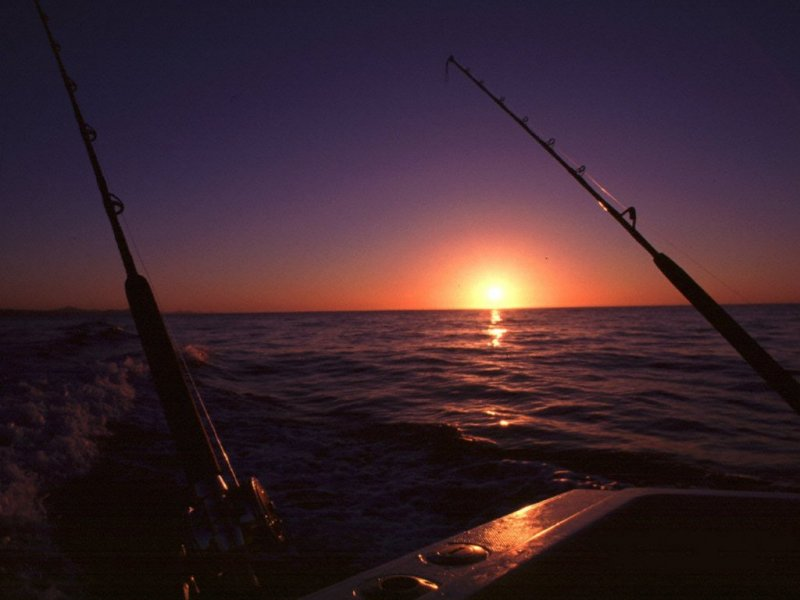Saltwater fishing wallpaper desktop wallpapersafari - Carp fishing wallpaper hd ...