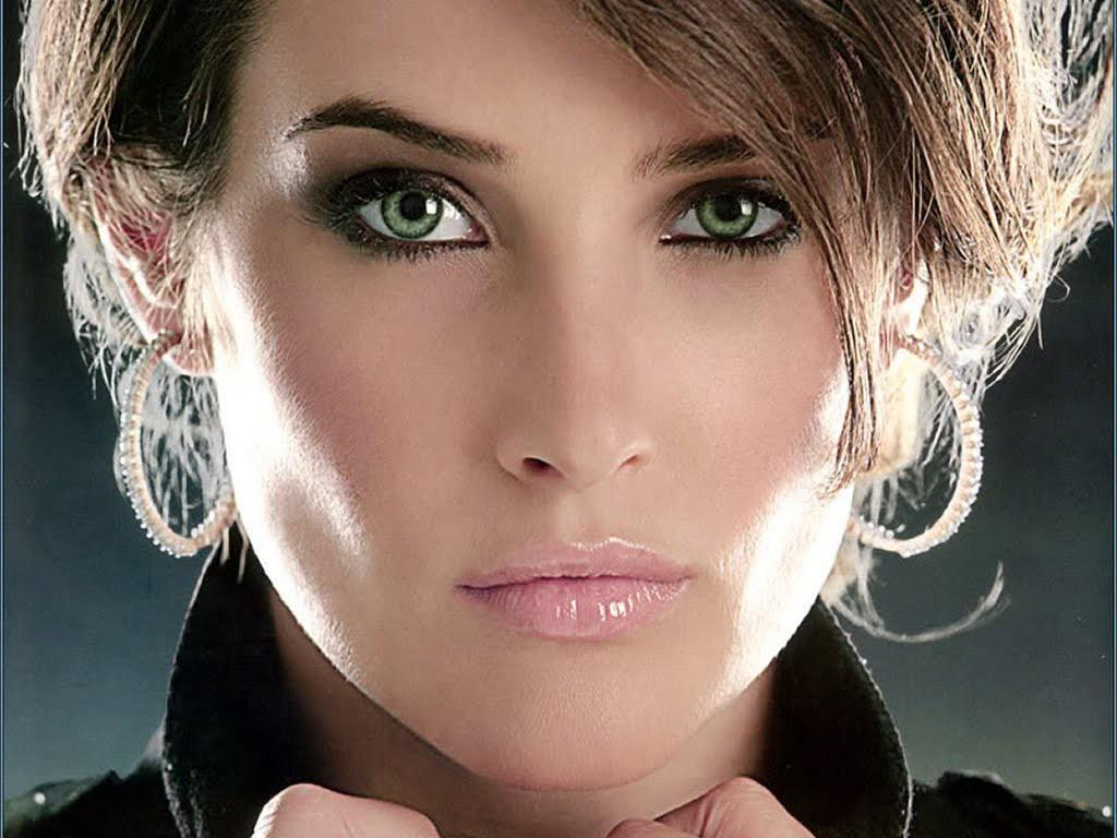 Cobie Smulders hd New Nice Wallpapers 2013 Cute HD Walls 1024x768