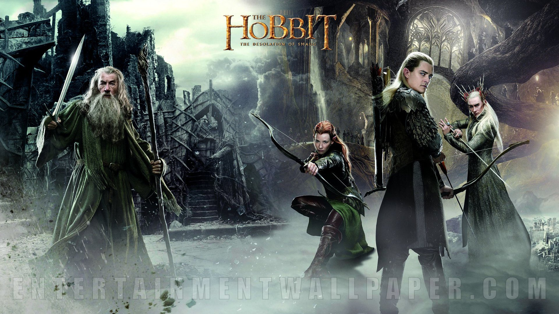 The Hobbit The Desolation of Smaug Wallpaper   10042875 1920x1080 1920x1080