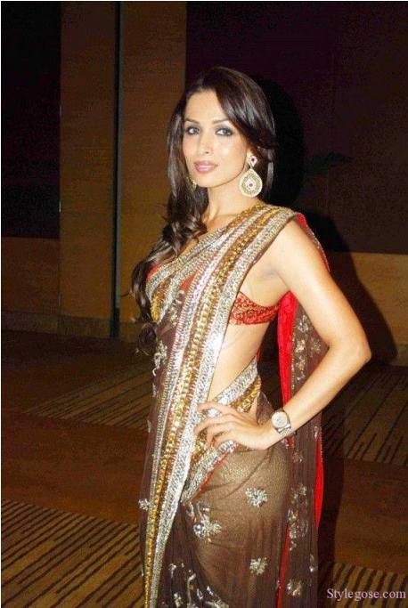 2015 at 458 683 in Bollywood Actresses Images with Sarees 2015 By 458x683