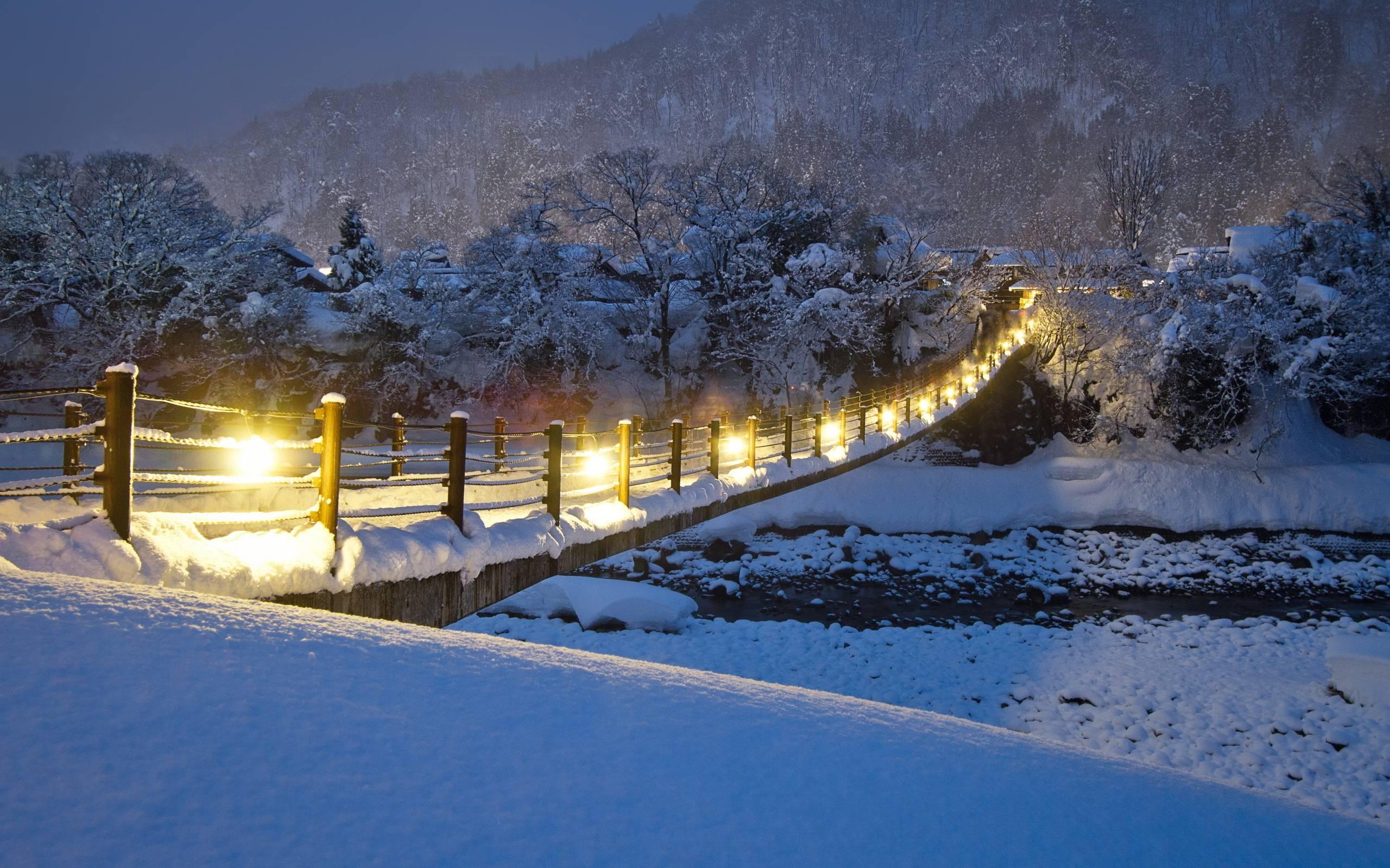 Beautiful Winter Night Wallpaper 2560x1600