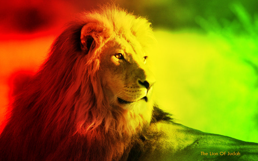 The Lion Of Judah by Psychoshroomz 900x563