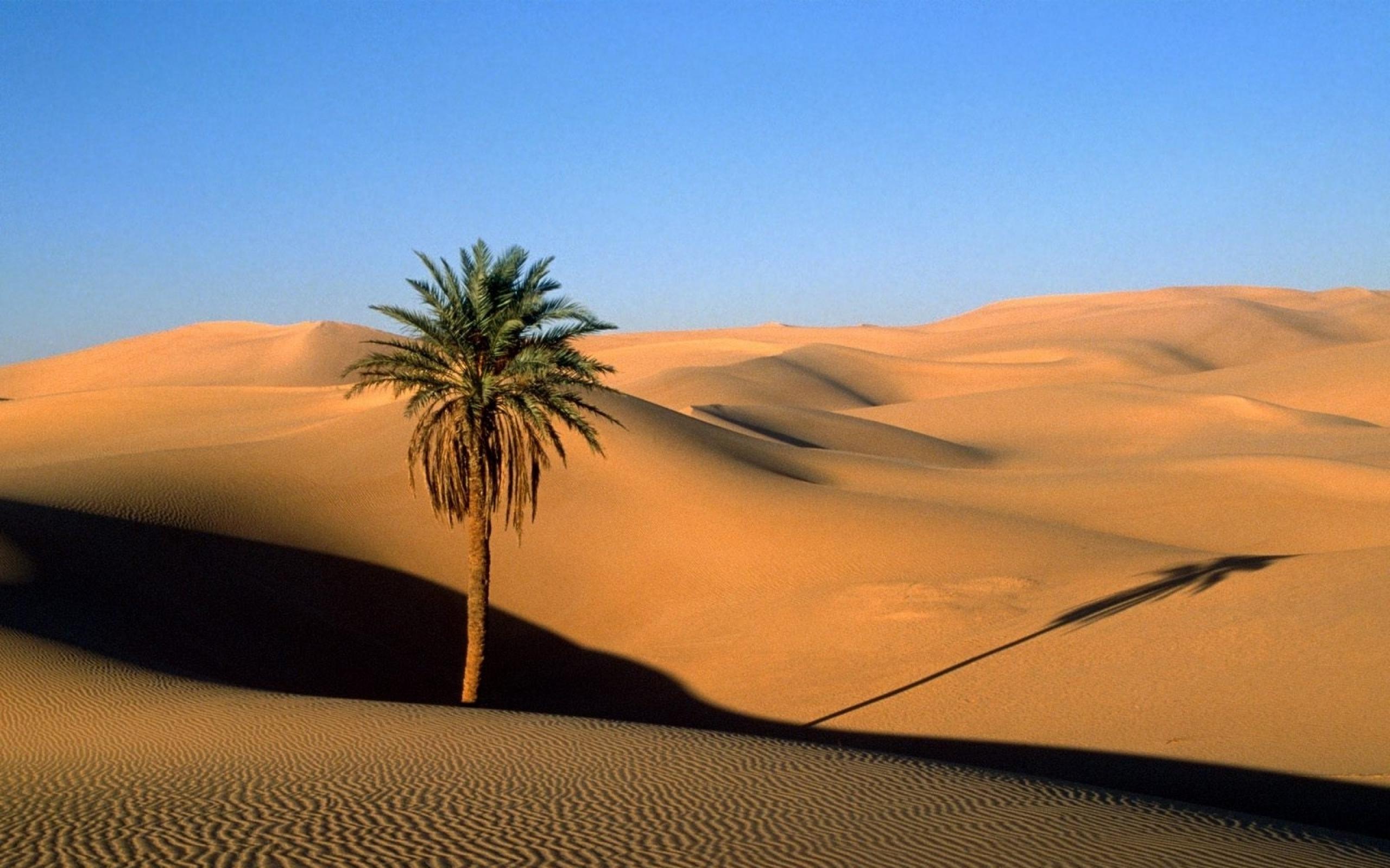 Free Download Alpha Coders Wallpaper Abyss Earth Desert