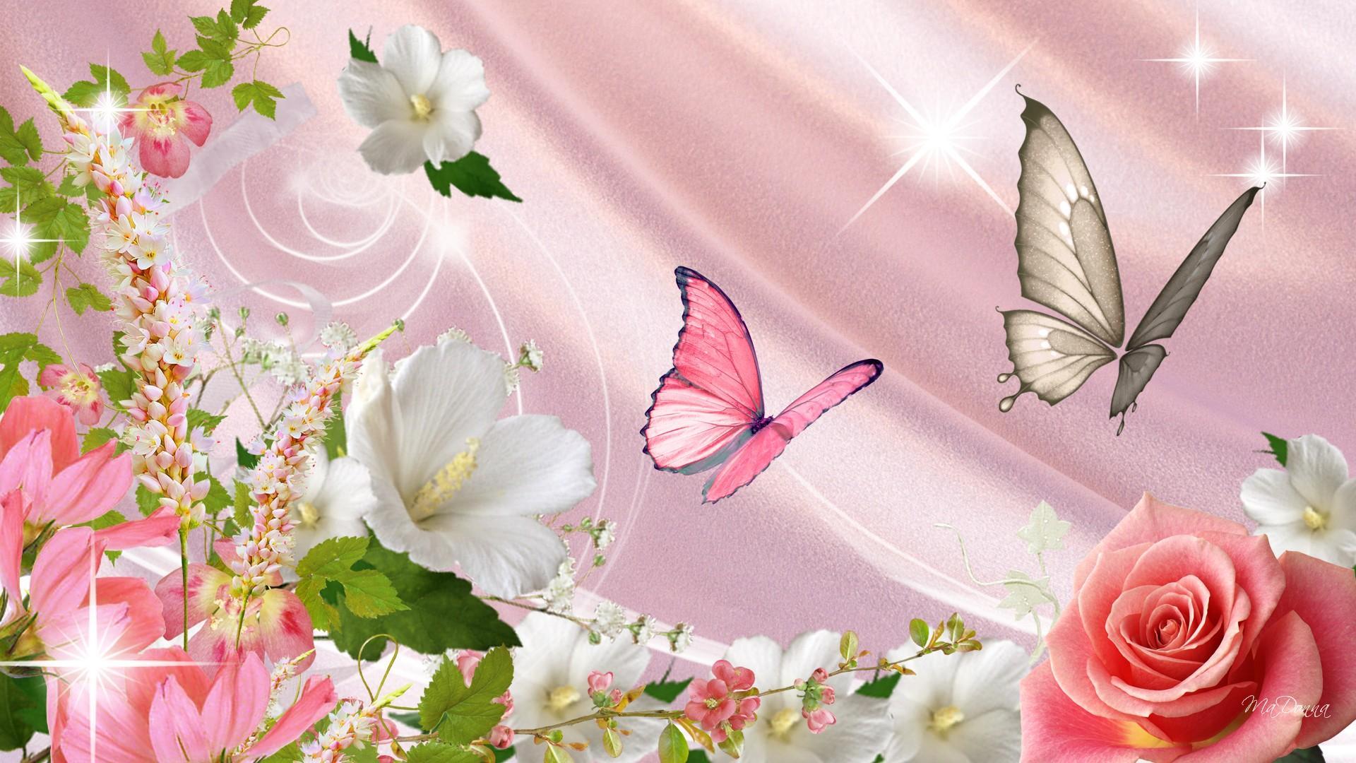 Wallpaper Butterflies and Flowers 1920x1080