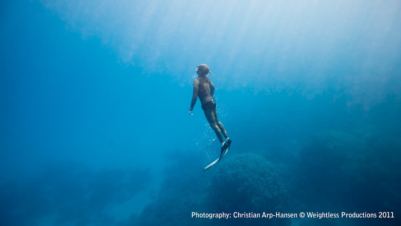 Weightless Emotional Freediving Medfish Magazine 1280x720