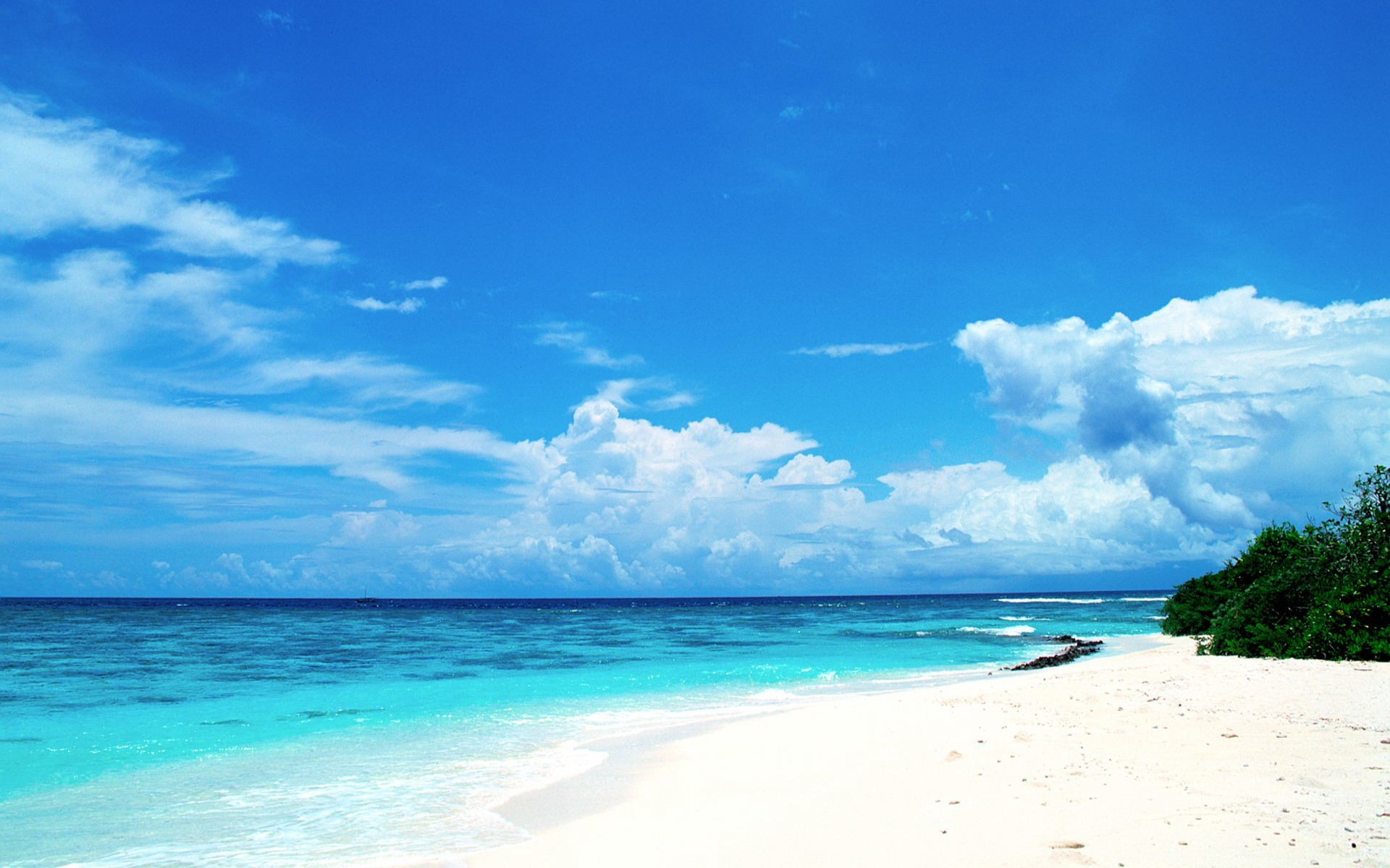 Maldives Beach Summer Wallpaper 1920x1200