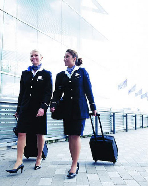 Male Flight Attendant Uniform HD Walls Find Wallpapers 520x653