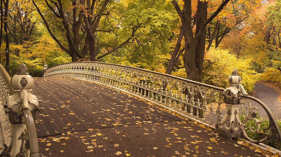 Pin Fall Central Park New York Hd Wallpaper 966x543