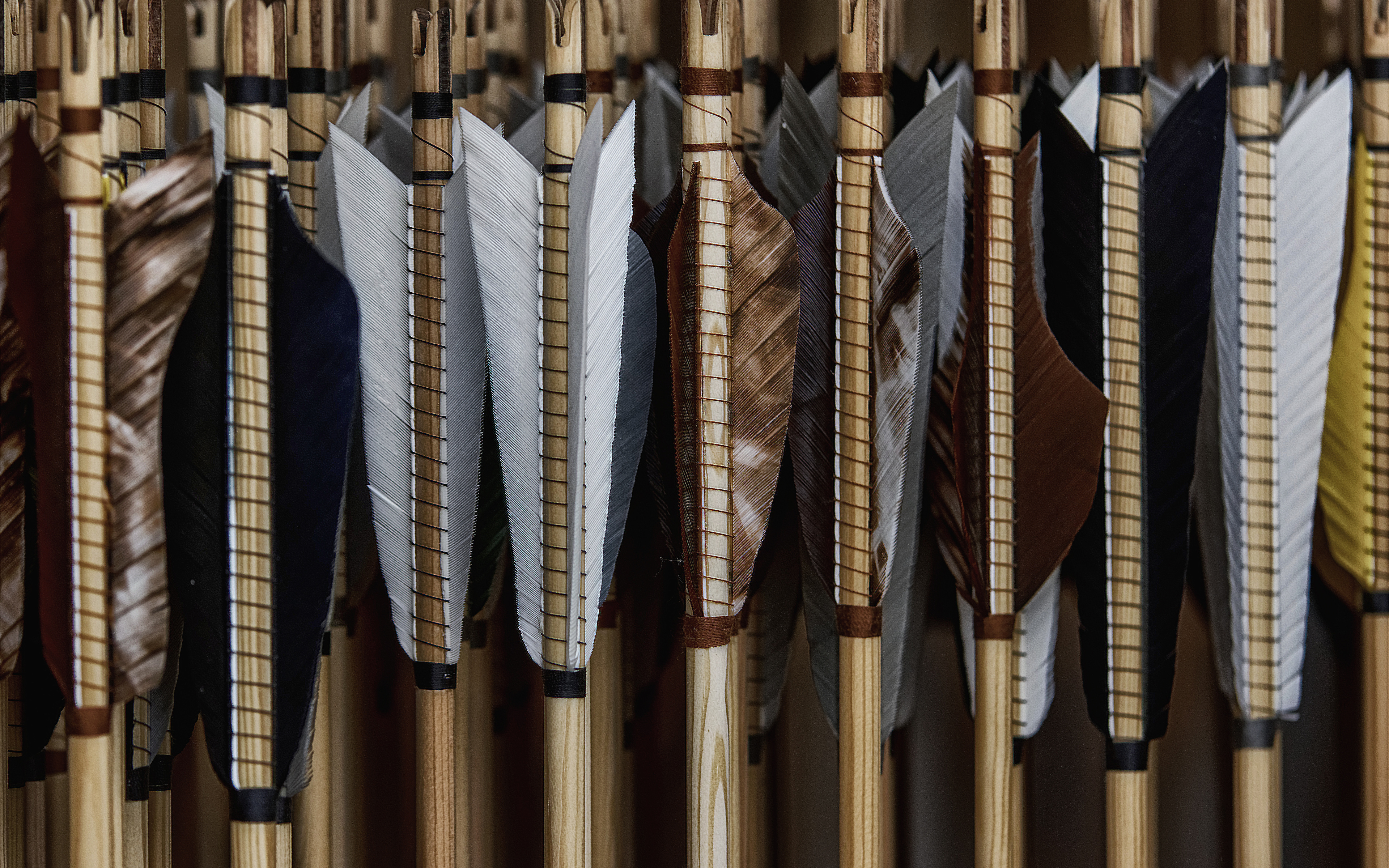 Images Wooden arrow Feathers Closeup 3840x2400 3840x2400