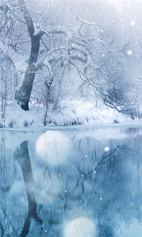 Frozen Lake Windows Phone Wallpaper FreeWPWallpapers 480x800