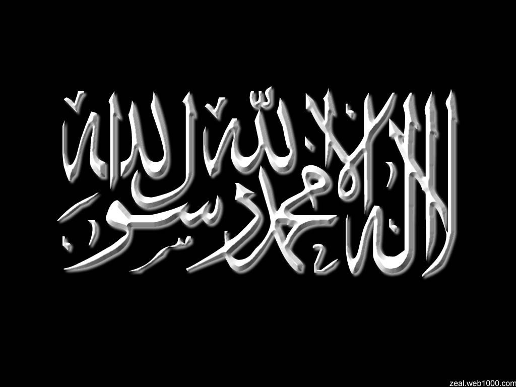 Posted by Syed Qamar Hussain Naqvi at Sunday April 10 2011 1024x768