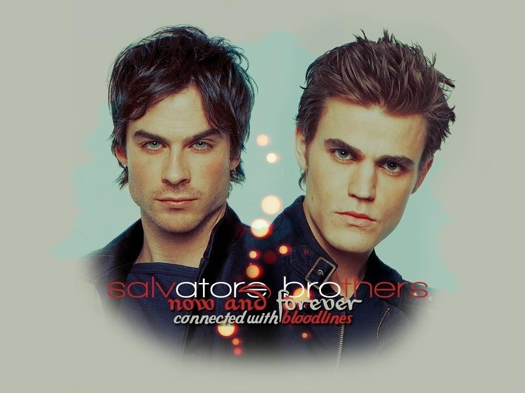 DamonStefan   Damon and Stefan Salvatore Wallpaper 20832201 1024x768