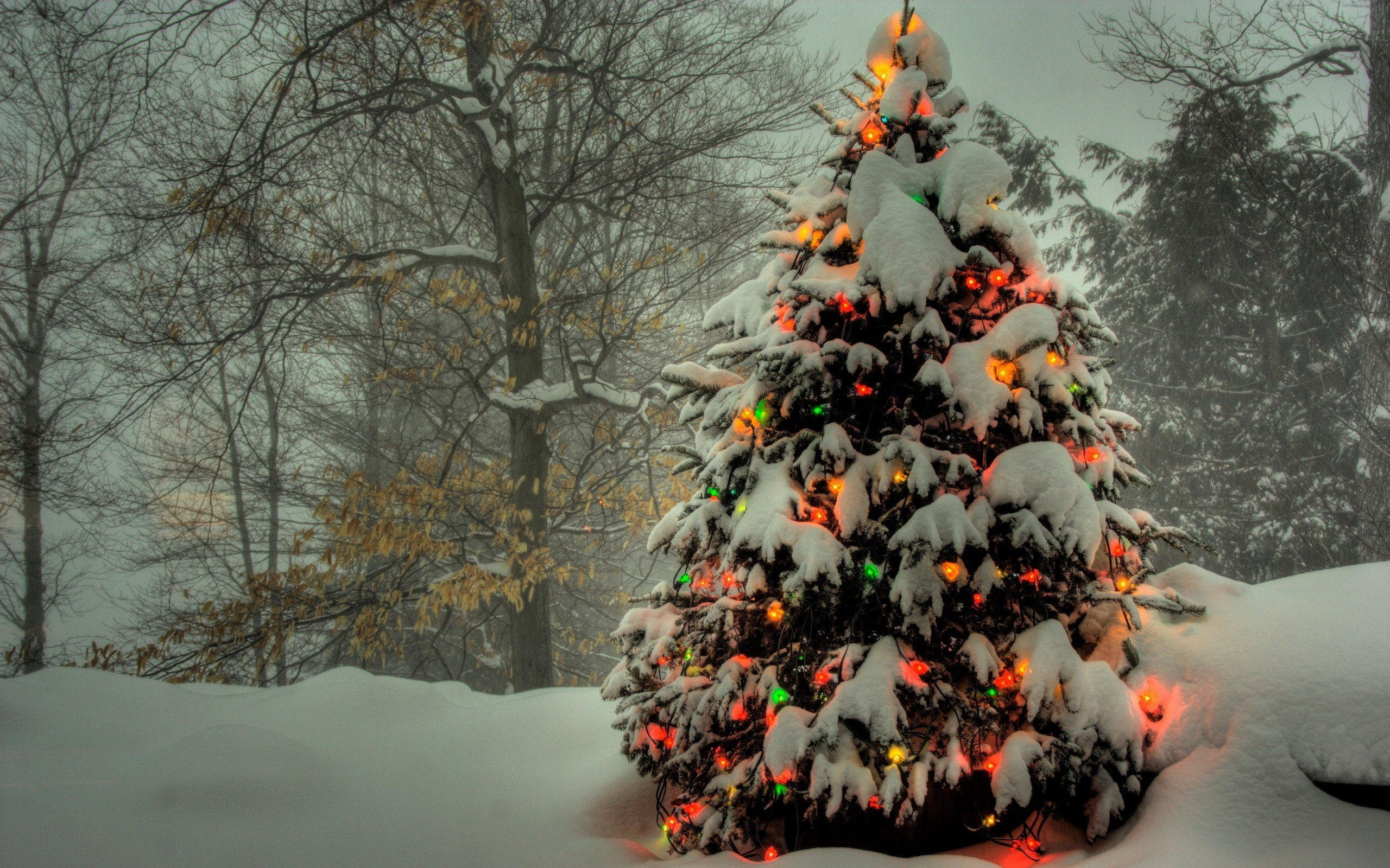 Download hd 2560x1600 Christmas computer background ID436141 for 2560x1600