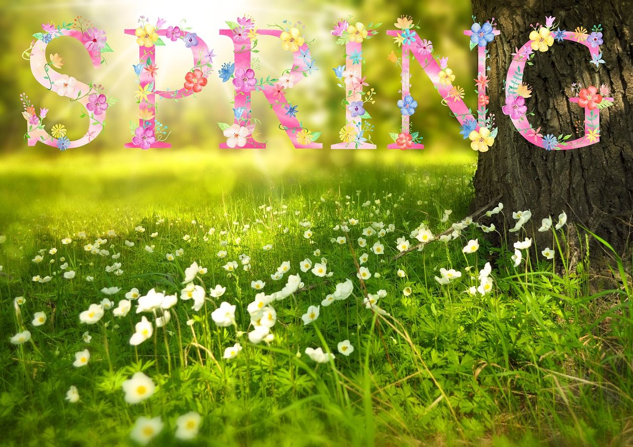 First Day of Spring 2020 The Spring Equinox Spring wallpaper hd 1280x905