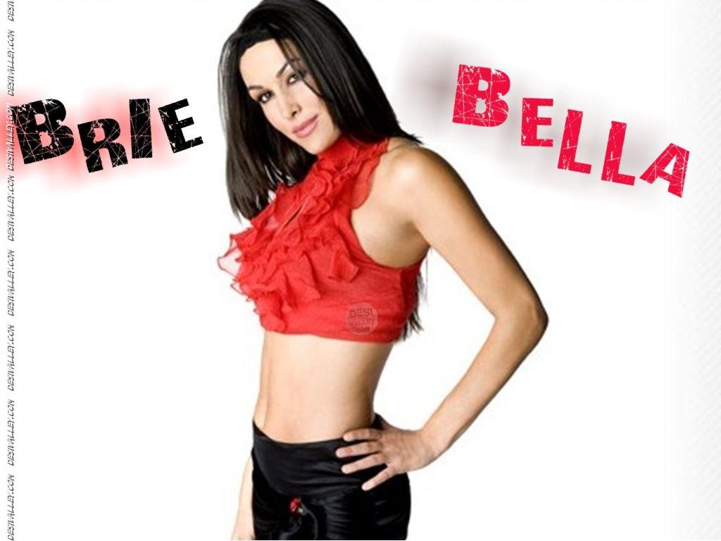 [urlhttpwwedesivalleycomwwe sexy divas brie bella wallpaper 1024x768