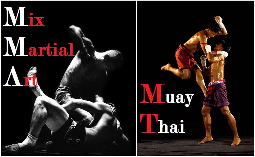 Free Download Mixed Martial Arts Or Muay Thai Singpatong Sitnumnoi 831x513 For Your Desktop Mobile Tablet Explore 76 Mixed Martial Arts Wallpaper Martial Arts Screensavers And Wallpapers Martial Arts