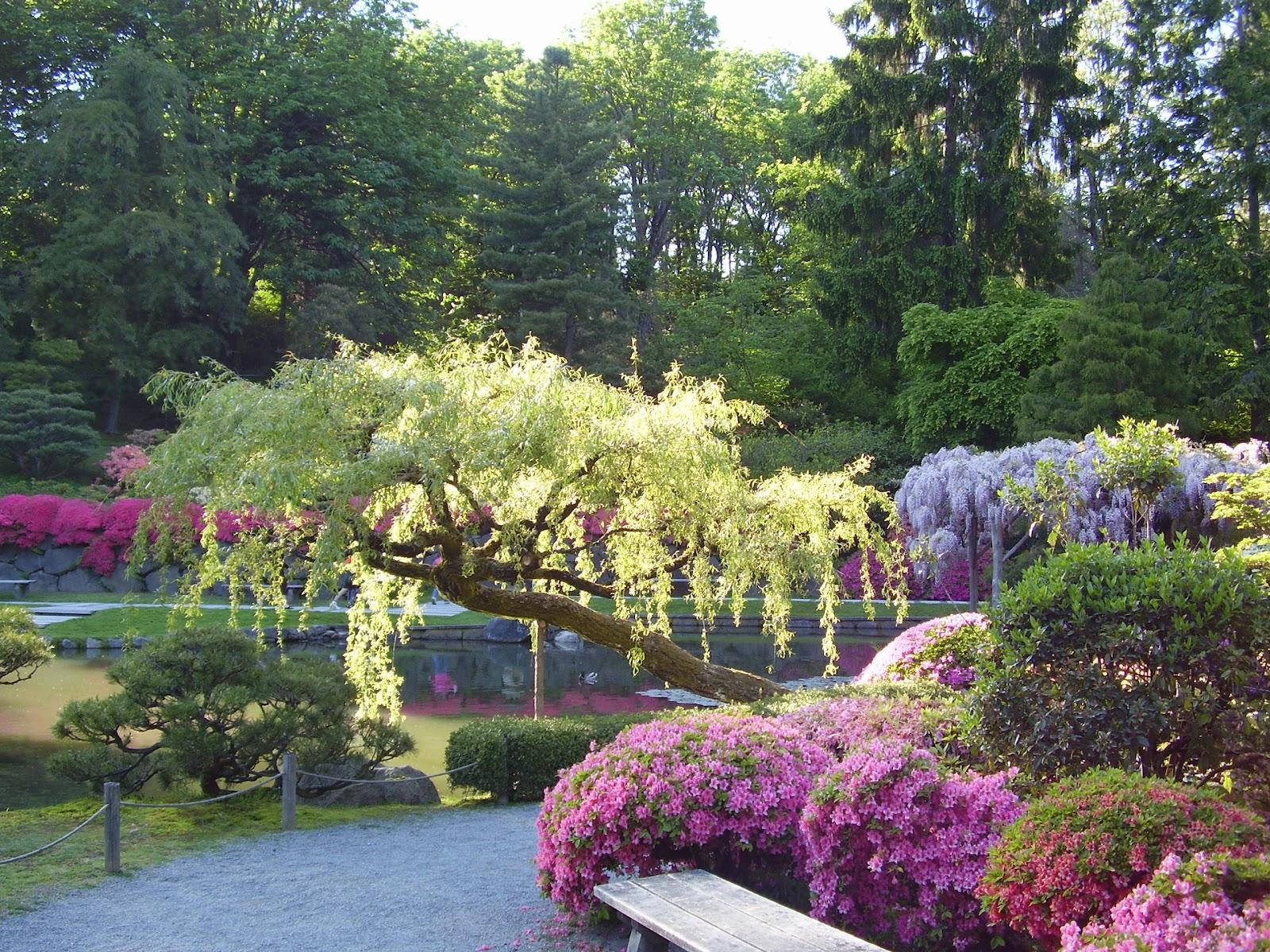 Beautiful Japanese Garden wallpapers 1600x1200