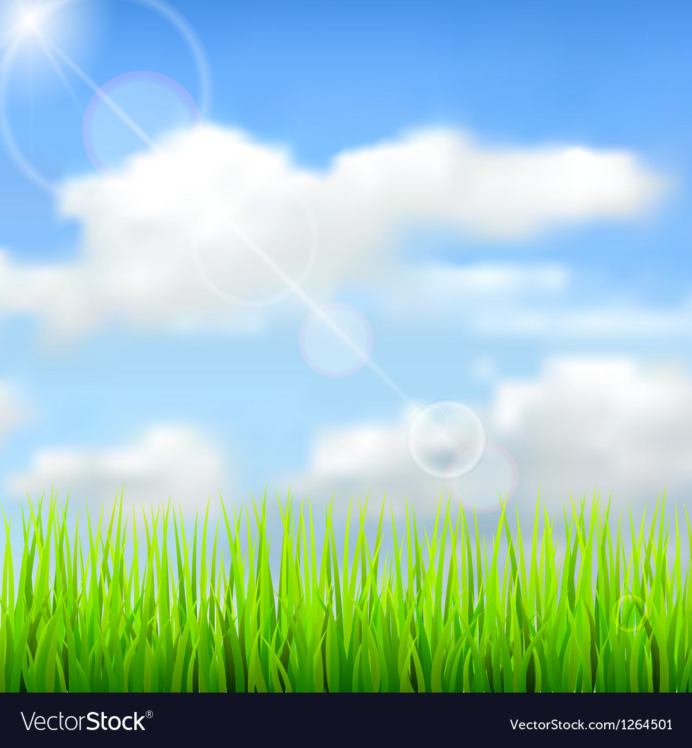 Nature spring background Royalty Vector Image 1000x1080