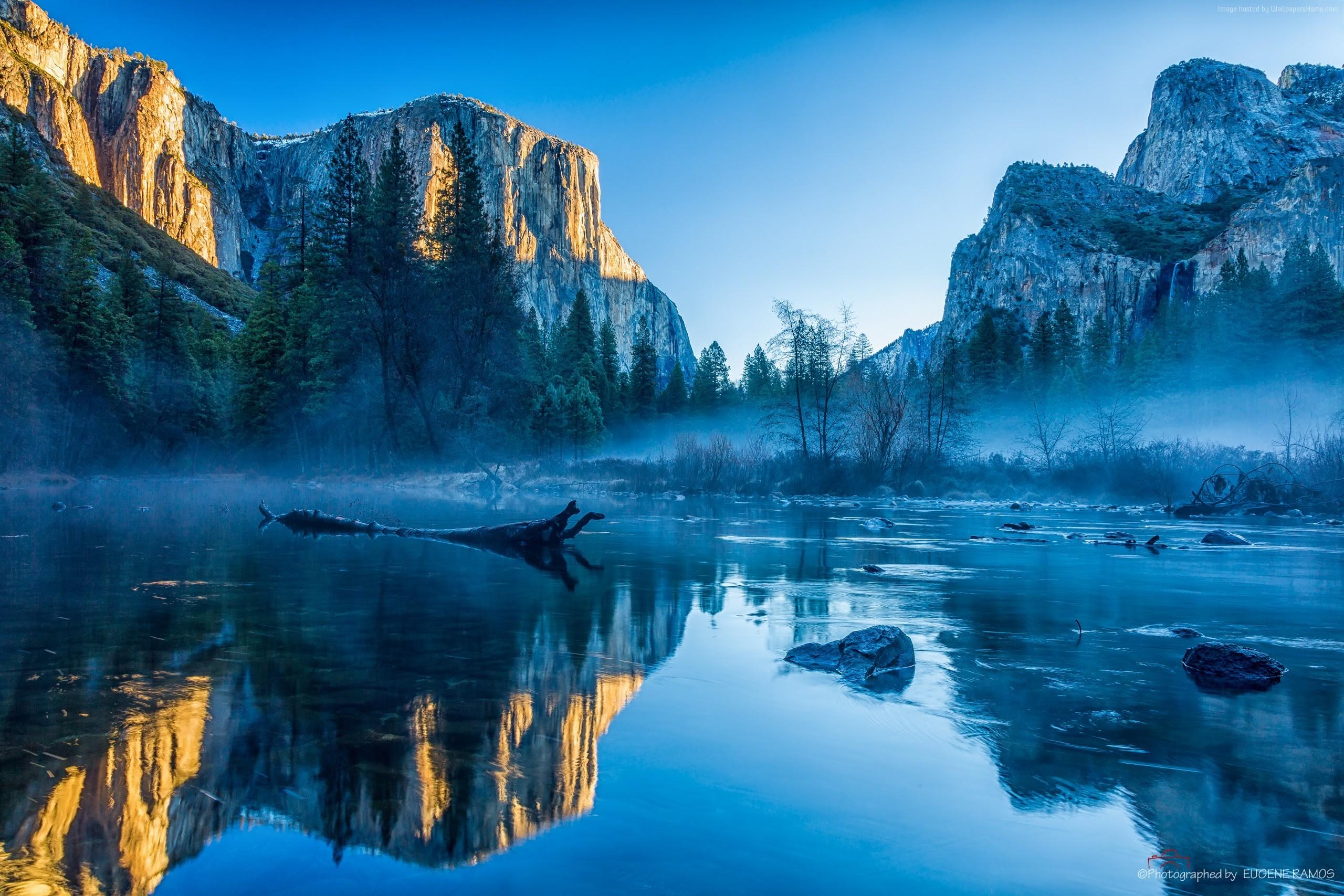 Yosemite Wallpaper OS Yosemite 5k wallpapers winter forest OSX 2560x1707