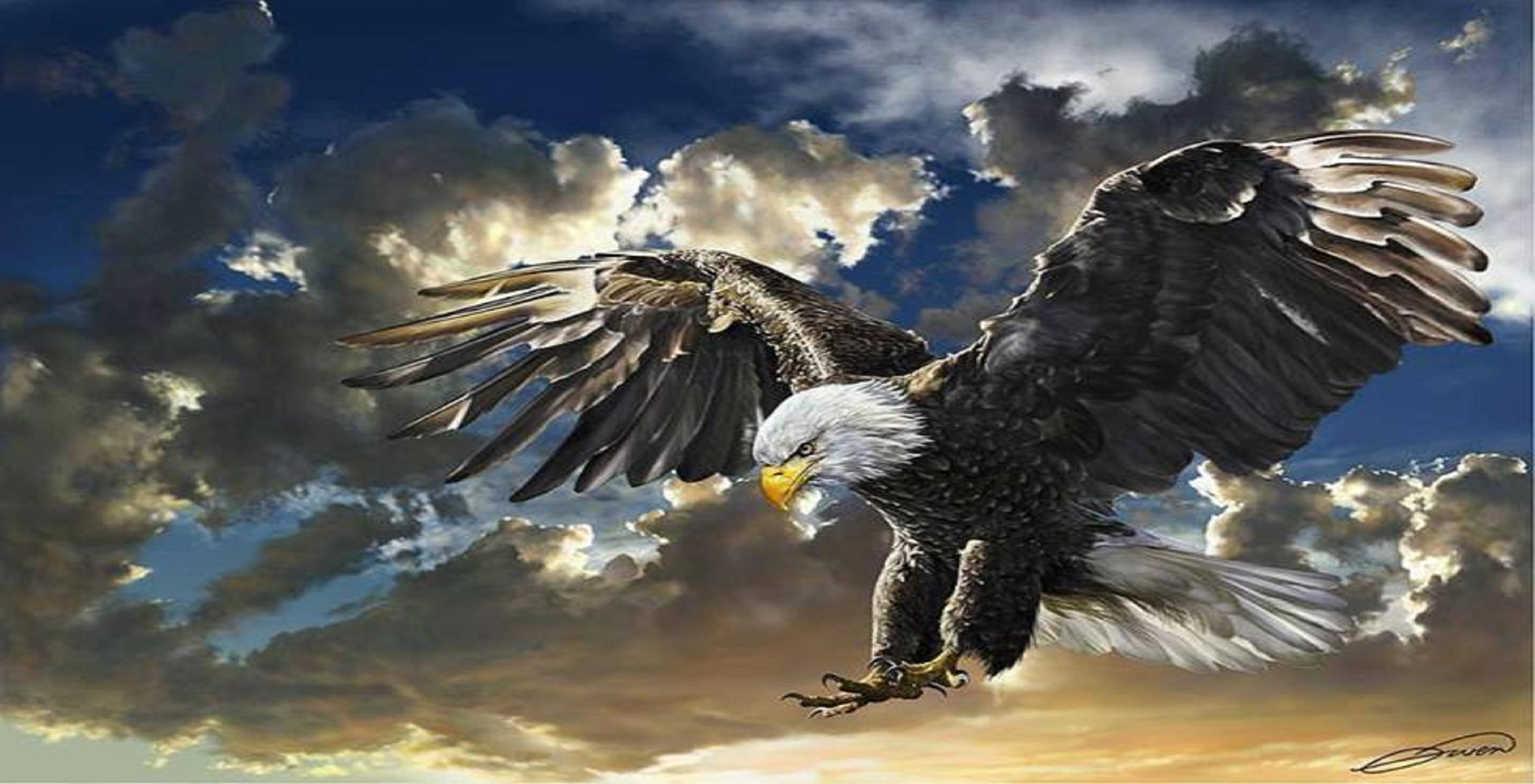 Eagle painting wallpaper