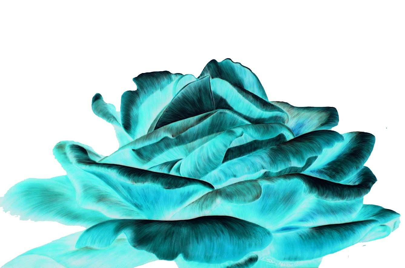 Turquoise And Black Wallpaper image gallery 1337x885