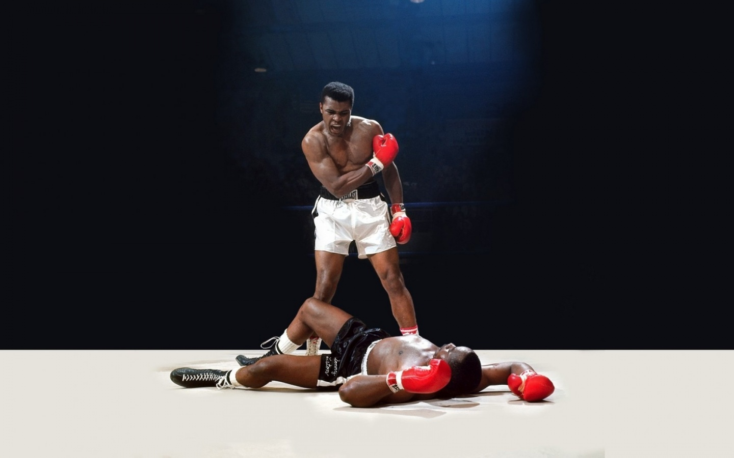 Muhammad Ali 1440 x 900 Download Close Images   Frompo 1440x900