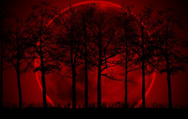 Red moon wallpaper wallpapers   4K Ultra HD Wallpapers download now 600x380