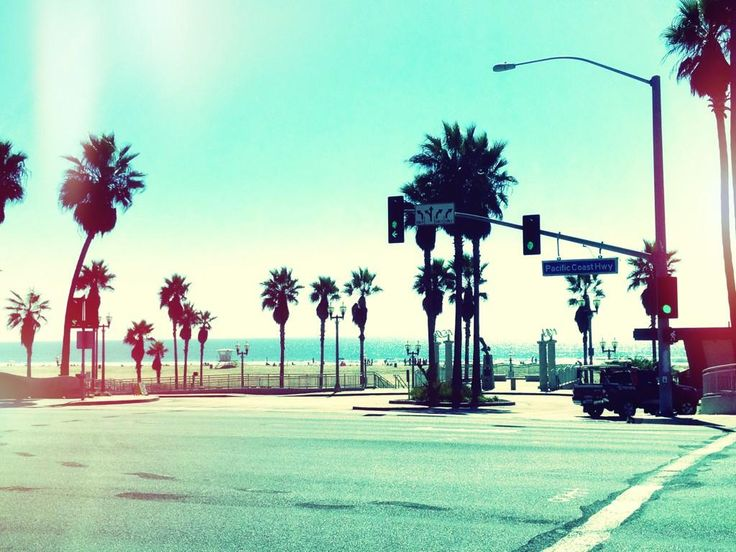 For California Tumblr Shako Endless Summer Wallpapers Backgrounds 736x552