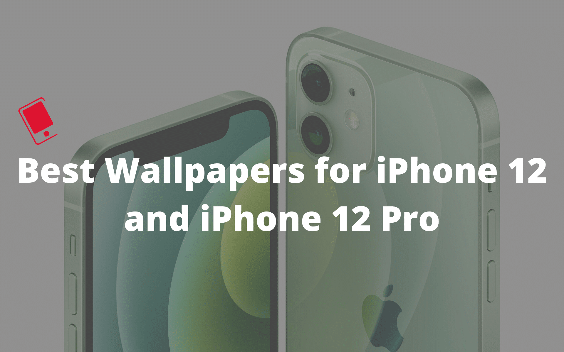 Best Wallpapers for iPhone 12 and iPhone 12 Pro