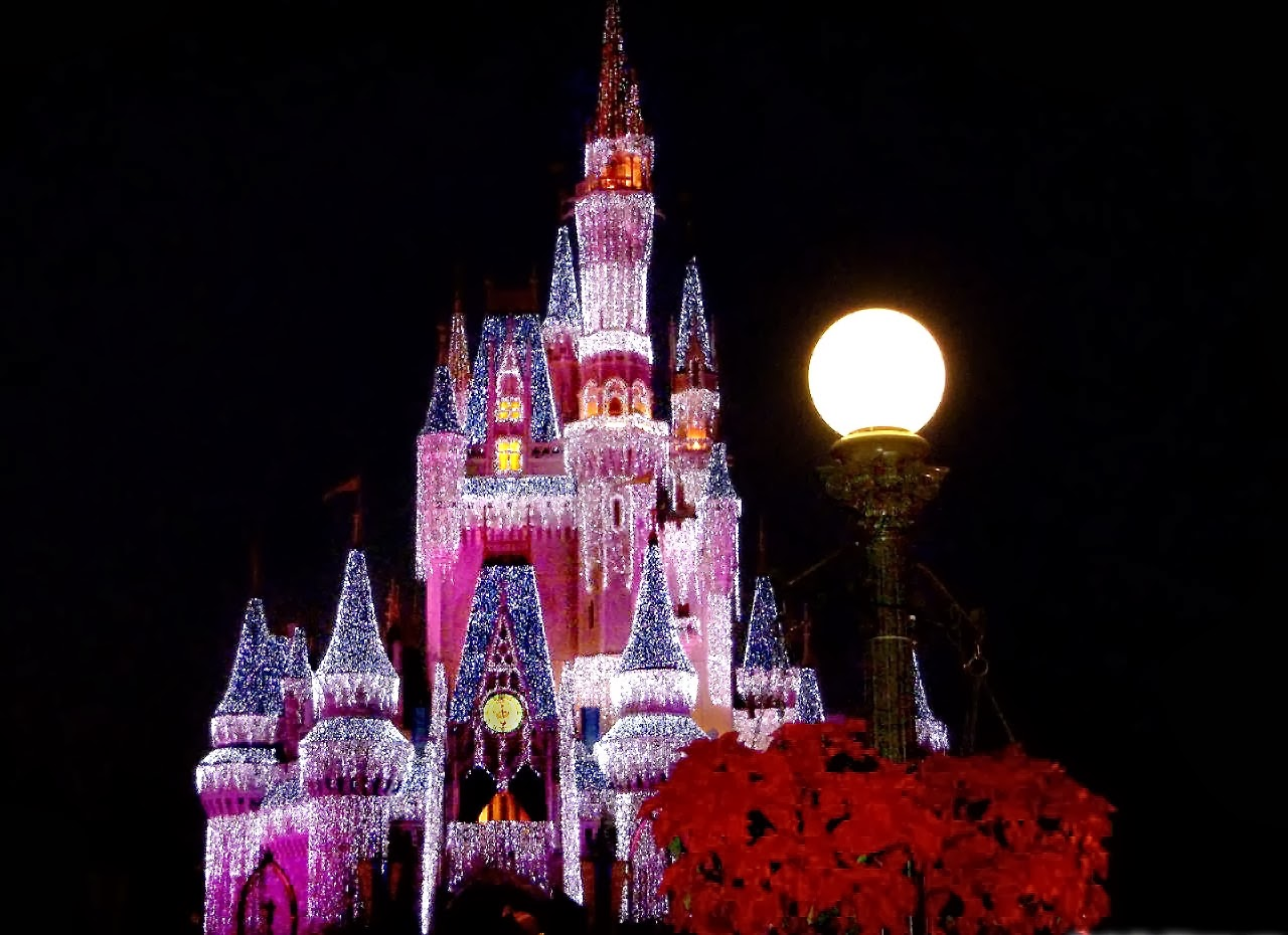 Disney Castle HD Wallpapers Download   Best Photos Wallpapers 1280x930