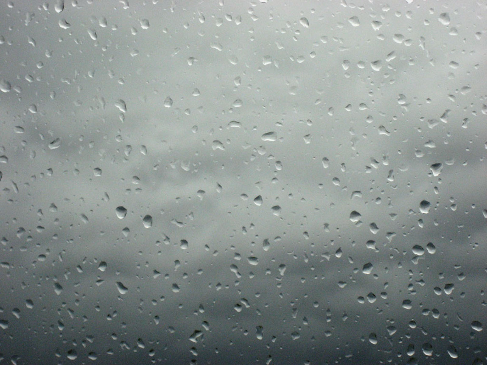 Tag Rain Drops on Glass Wallpapers Images Photos and Pictures for 1600x1200