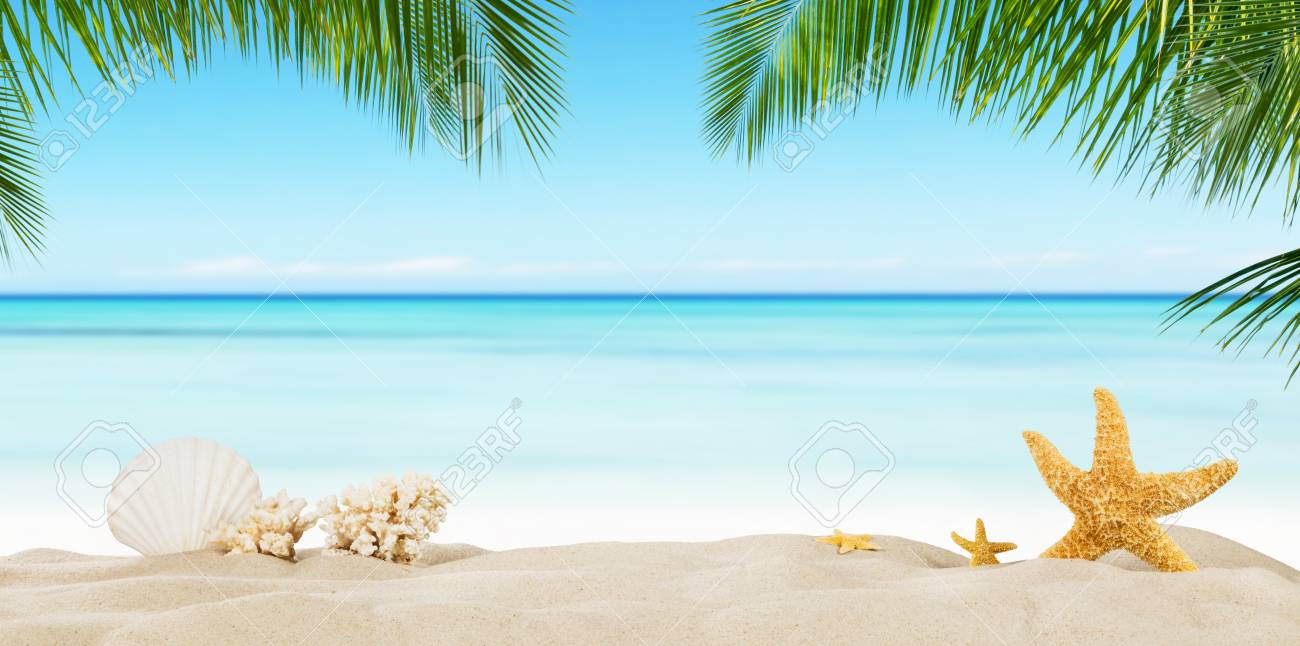 Tropical Beach With Sea Star On Sand Summer Holiday Background 1300x646