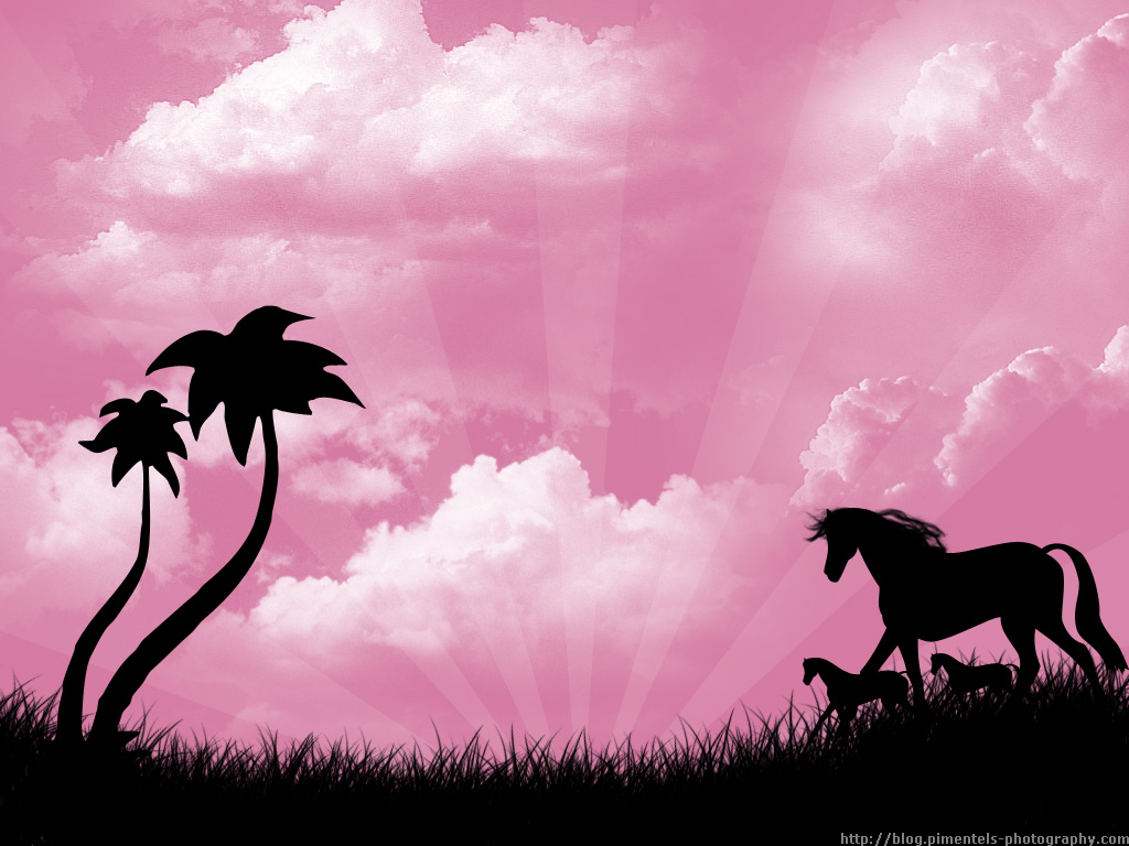 Pink Horse Wallpaper Wallpapersafari