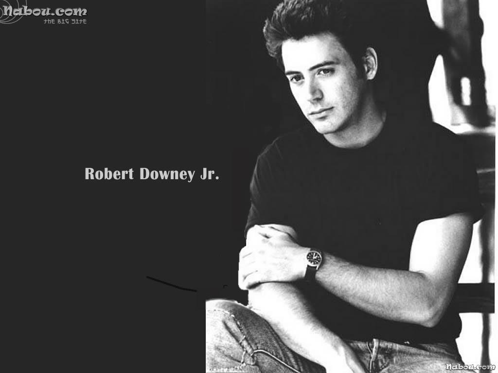Robert Downey Jr Wallpapers HD NQ332DI WallpapersExpertcom 1024x768