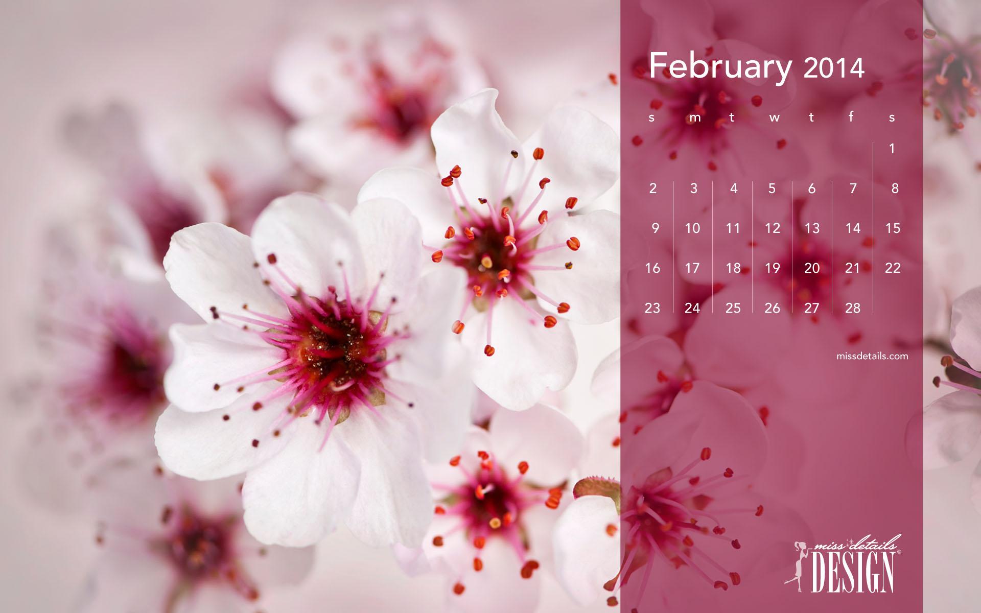 inspiring February desktop calendar from missdetailscom 1920x1200
