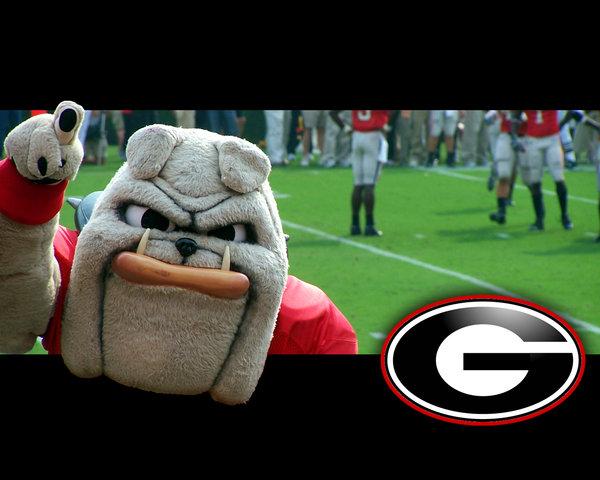 Georgia Bulldogs Football by briman4031 600x480